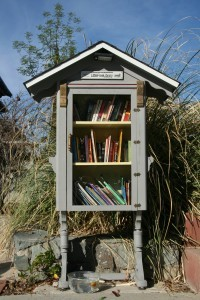 One of the Little Free Libraries found around town (Photo by Diane Larabee)