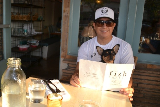 A North Park local dines at Fish Public in Kensington with miniature pinscher-chihuahua, Chorizo.  (Photos by Hoa Quách)