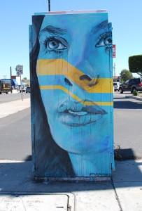 A utility box in North Park painted by Hunter Holthaus  (Photo by Jason Gould)