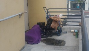 A homeless person sleeps behind a business (Photo by Ken Williams)