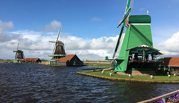 Windmills at Alkmaar (Photo by Ron Stern)