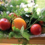 Growing tasty tomatoes at home is easy