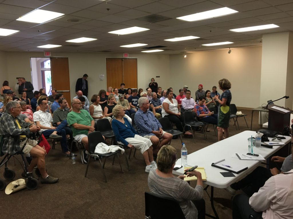 U.S. Rep. Susan Davis (standing at right) speaks at the Hillcrest Town Council community meeting on Aug. 9. (Photo by Benny Cartwright)