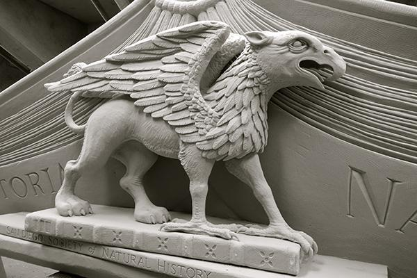 "Image of the griffin pediment, which now marks the entrance to ""Extraordinary Ideas"" exhibit. (Photo by Michael Field)"
